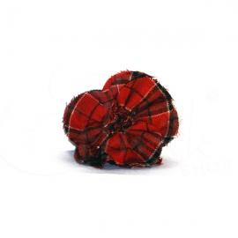 Spilla - ferma capelli fiore in tartan rosso